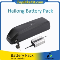Hailong 48V13.6AH 18650 Li-ion Battery Pack with Charger