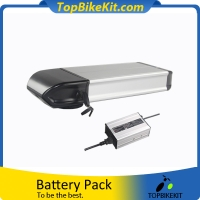 Dolphin 03 36V13AH Li-ion 18650 rack battery pack with Charger