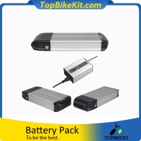 Dolphin 03 48V13AH Li-ion 18650 rack battery pack with Charger