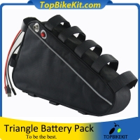 Triangle 48V20.8AH 18650 High Power Battery Pack with Charger and 5V USB Output
