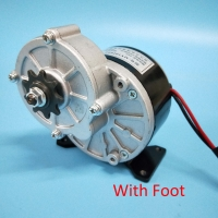 36V250W Brush Gear Motor for electric bicycle/ebike MY1016Z2