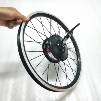 1.6kg AKM-74SX 36V250W front motor with 16inch Brompton 349 wheel rim